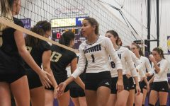 Mantooth, Lancaster resign from coaching volleyball