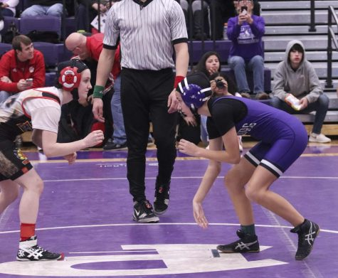 Sophomore wrestler places fourth at state tournament