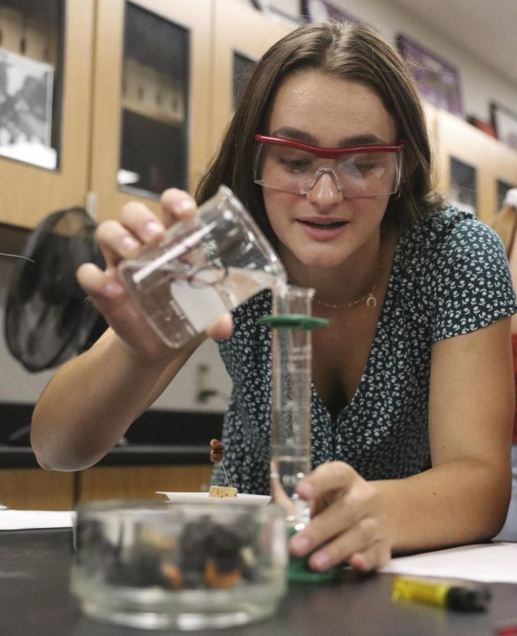 Honors biology students conduct an experiment- Aug. 30
