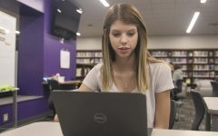 Student utilizes online learning